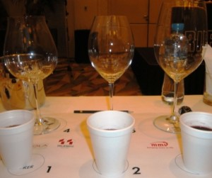 Riedel wine glasses for Pinot Noir, Shiraz, Cabernet Sauvignon