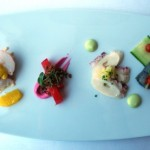 Poached Maine Lobster Salad, Beetroot Cured Organic Salmon, Marinated Octopus, Obsiblue Prawns