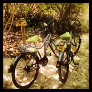 Cycling galore