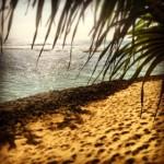 Why Beach