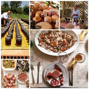 Slow food artisan producers in Le Marche