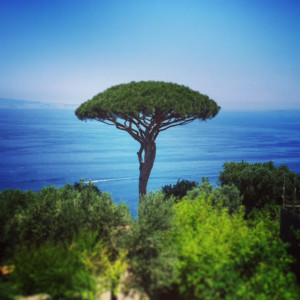 32.-View-of-Sorrento-peninsula-from-the-lemon-groves-in-Massa-Lubrense,-Campania