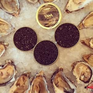 Yasa caviar - Abu Dhabi caviar